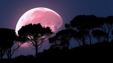 April Super Pink Moon 2021 FAQs: What Time is the Supermoon? How Often Does the Pink Moon Happen? Will it be Visible in India? 5 Frequently Asked Questions Answered