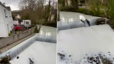 River Dulais in Wales Turns White After Milk Tanker Overturns & Spills Its Contents Into the Water, See Pic & Video