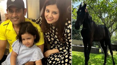 CSK Skipper MS Dhoni Adds A Horse In Ranchi Farmhouse, Wife Sakshi Shares Glimpse Of The Stallion (See Pics)