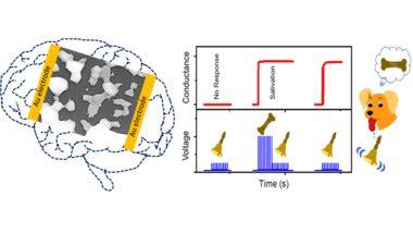 Scientists Develop Efficient Artificial Synaptic Network That Mimics Human Brain