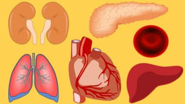 Delhi: 43-Year-Old Brain-Dead Woman Gives Gift of Life to Four People Through Organ Donation