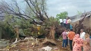 Cyclone Tauktae: 2 Dead, 1 Injured After Tree Uprooted And Collapsed on Hut in Jalgaon
