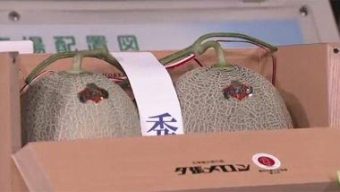 Japan's Yubari Melons Sell for Almost $25,000 at Hokkaido Traditional Auction