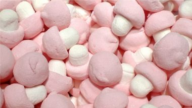 National Marshmallow Day 2021 in Australia: Here Are Some Interesting Facts About This Delicious Confectionery