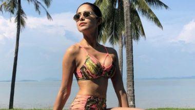 Nushrratt Bharuccha Hot Bikini Pics: 7 Times the Glamorous Diva Proved to Be a Sucker for Sexy Swimwear