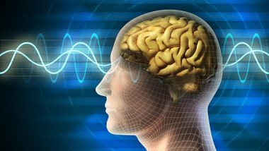 Brain's Memory Center Stays Active During 'Infantile Amnesia': Study