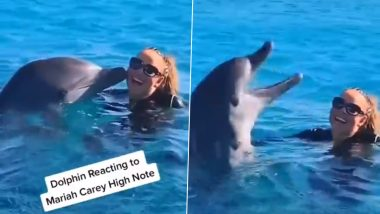 Dolphin Reacting to Mariah Carey's High Note Is Winning Hearts; Watch Viral Video