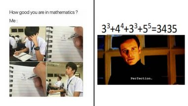 World Maths Day 2021 Funny Memes and Jokes: Do Numbers Fascinate You? Hysterical Posts Only Math Geeks Will Relate