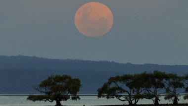 Super Blood Moon 2021: Red Moon Visible In Australia Two Hours Before Lunar Eclipse; Netizens Share Stunning Pictures
