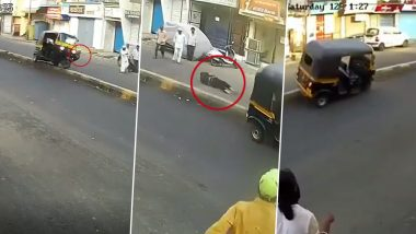 Karma Strikes Back! Pune Auto Driver Meets With Terrible Accident While Trying To Kick a Dog On The Road (Watch Video)