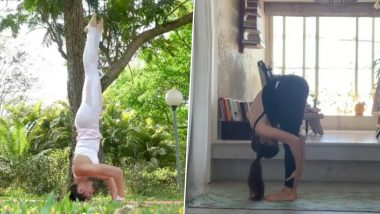 International Yoga Day 2021: From Headstand to Surya Namaskar; 5 Posts of Jacqueline Fernandez Prove that She is a True Yoga Lover