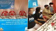 Uttar Pradesh: Lucknow Police, PETA Seize Spikes Used on Horses