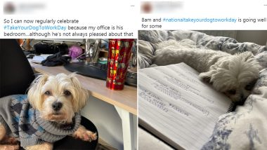 National Take Your Dog to Work Day 2021: Netizens Share Adorable Photos of Their Pet Friends at Work on Twitter to Encourage Adoptions (View Pics)