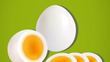 9 'Egg-Splosive' Egg Puns To Crack You up This National Egg Day 2021