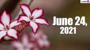 June 24, 2021: Which Day Is Today? Know Holidays, Festivals and Events Falling on Today's Calendar Date