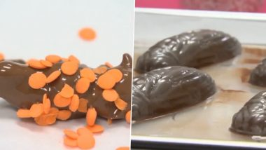 Chocolate-Covered Cicadas Recipe by This Maryland Company Leaves Netizens Baffled, Watch Viral Video