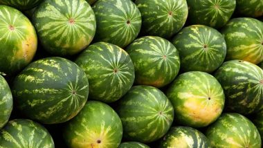 Jharkhand Farmer's Bumper Watermelon Harvest Purchased by Indian Army's Sikh Regimental Centre After He Offers It for Free