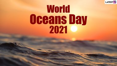 World Oceans Day 2021: From Avoiding Plastic to Using Reusable Bags; 5 Things You Can Do To Save Our Oceans
