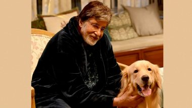 Amitabh Bachchan Has the Cutest Co-star on Shoot Today, Shares a Post With His 'Pawdorable' Buddy (View Pic)