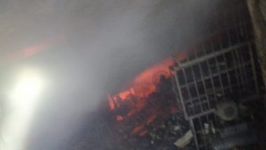 Delhi Fire: Blaze Erupts at Residential-Cum-Commercial Building in Madipur, 24 Fire Tenders Rushed to Spot