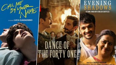 Pride Month 2021: Call Me by Your Name, Dance of the 41, Evening Shadows – 5 LGBTQ+ Films To Watch on Netflix India!