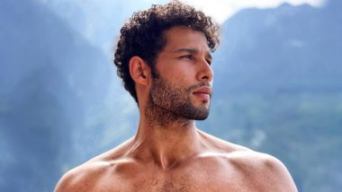 Siddhant Chaturvedi's New Shirtless Picture Will Shoo Away the Mid-Week Blues (View Pic)