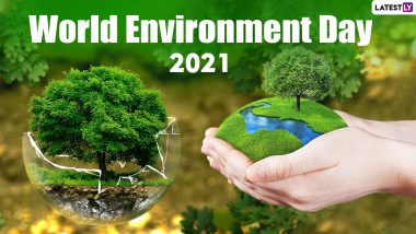 World Environment Day 2021: Here Are The Themes For The Last 10 Years Including WED 2021 Highlighting The Importance Of Environment Protection