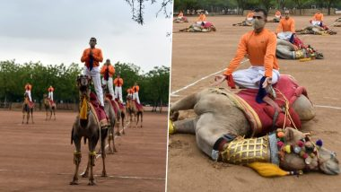 International Yoga Day 2021: BSF Personnel Perform Yoga Asanas on Camels; Urmila Matondkar Calls It 'Cruel'