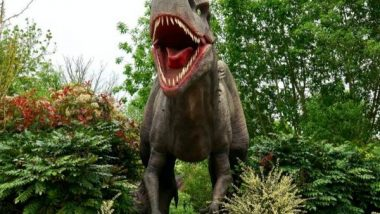 Dinosaurs Lived in Greenhouse Climate With Hot Summers, Study Shows