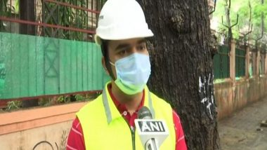 BMC Appoints Tree Surgeon in Mumbai to Protect Vulnerable Trees from Falling