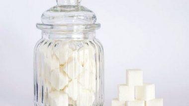 Health News   Researchers Find Health Benefits of Connecticut-grown Sugar Kelp