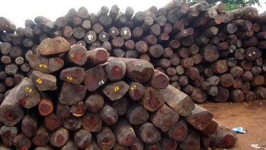 Kerala Rosewood Trees: 'Paid Rs 25 Lakh Bribe to Forest Officials', Claims Timber Dealer