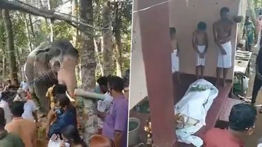 Elephant Pays Last Respects to Mahout Who Died of Cancer in Kerala; Watch Heart-Rending Viral Video