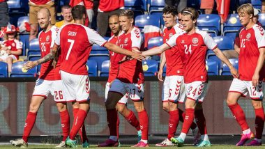 Denmark vs Finland Euro 2020 Match to Restart Following Christian Eriksen's Collapse