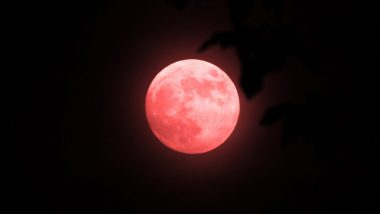 Strawberry Moon 2021: Netizens Share Majestic Photos of Year's Last Supermoon on Twitter (View Pics)