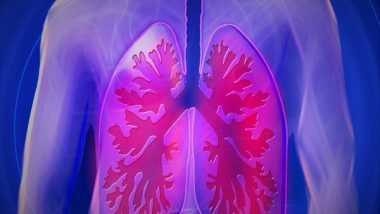 Science News   Study Discovers Compounds That Protect Lung Cells, May Block COVID Virus