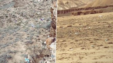 Leh Ladakh Tourism: BJP MP Jamyang Tsering Namgyal Urges Tourists Not to Destroy Beauty of The Place By Throwing Garbage, Shares Pics