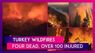 Turkey Wildfires: Four Dead, Over 100 Injured As The Country Battles Raging Fires Forcing Residents To Flee