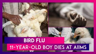 Bird Flu: 11-Year-Old Boy Dies At AIIMS, First Recorded Casualty In India This Year