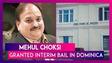 Mehul Choksi Granted Interim Bail In Dominica, Can Travel To Antigua For Treatment