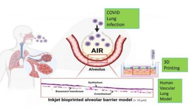 Anti-Diabetic Drug Can Be Re-Purposed As COVID-19 Treatment, Says Study