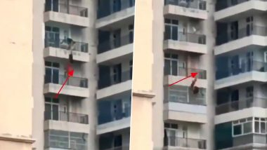 Ghaziabad: Woman Falls Off 9th-Floor Balcony After Argument With Husband, Chilling Video Surfaces