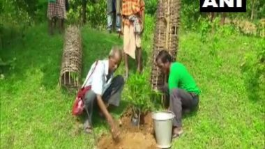 India News   Odisha: 72-year-old Tree Teacher Plants More Than 30,000 Trees over 60 Years