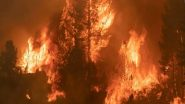 Turkey Forest Fire: Death Toll In Wildfire Raging in South Turkey Rises To 4; Firefighting Operations Underway (View Images And Videos)
