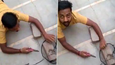 Uttar Pradesh: Power Thief's Snake Crawl To Cut Wires Caught on Video (Watch Viral Video)