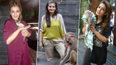 Raveena Tandon Shares Pics of Rescued Animals, Says 'My House Has Become like Dr Dolittle's Home'