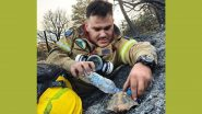 Greece Fires: Firefighter Gives Water to Turtle (View Pic)