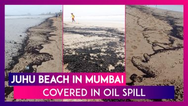 Juhu Beach, Mumbai Covered In Oil Spill; Clean Up Drive Underway By BMC
