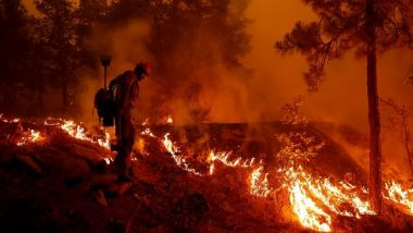 Wildfire Rages in Southern California Coastal Mountains, Major Highway Shut Down
