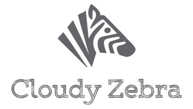 Albany-Based Cloudy Zebra Marketing Is Offering a $2000 Advertising Stimulus Package to Local Businesses That Qualify